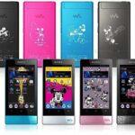 Sony Walkman NW F800