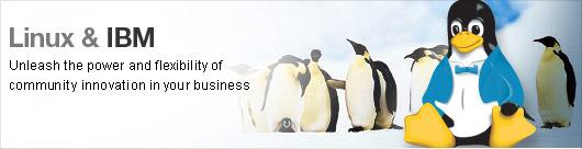 IBM & Linux